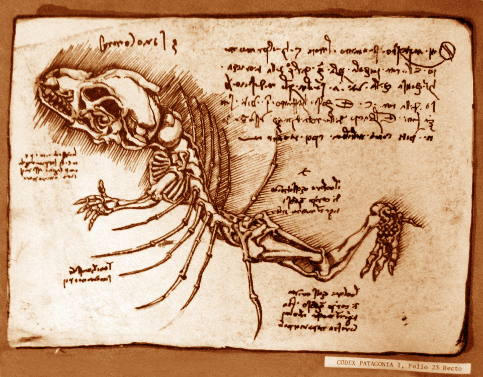 dragon-bones-1_1
