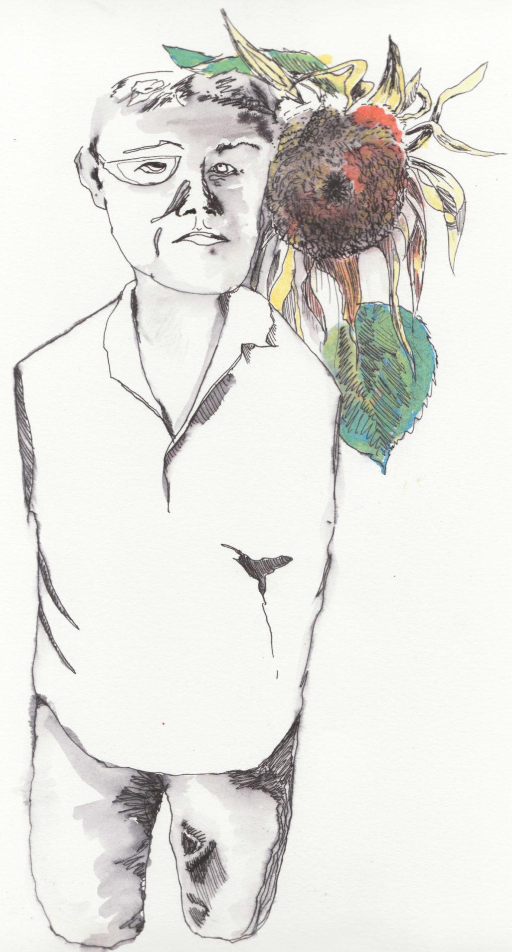 Illustration (c) by Mary Austin Fuller